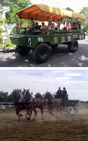 images/things-to-do/belgian-draft-horse.jpg